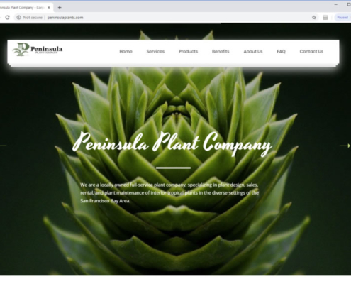 Retail Web Design Retail Web Design Firm Web Design For Retail Stores
