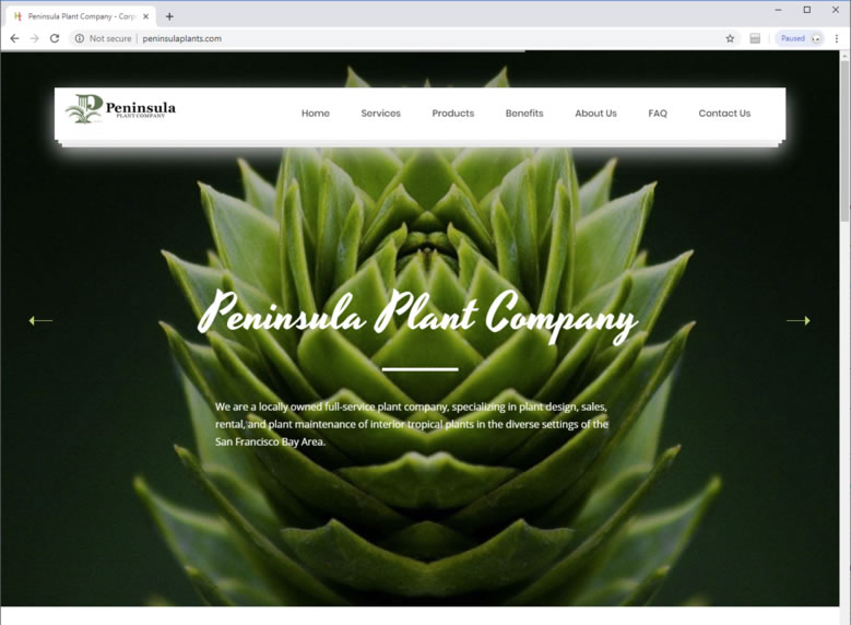Plant Staging Web Design Web Design For Plant Staging In San Jose Ca